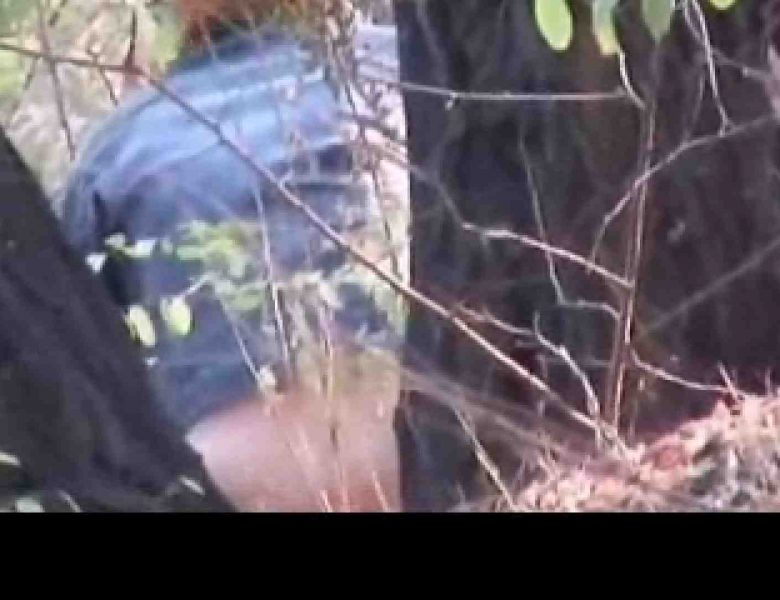 白人さんの野外排泄のぞきvol.3 無修正オマンコ  61画像