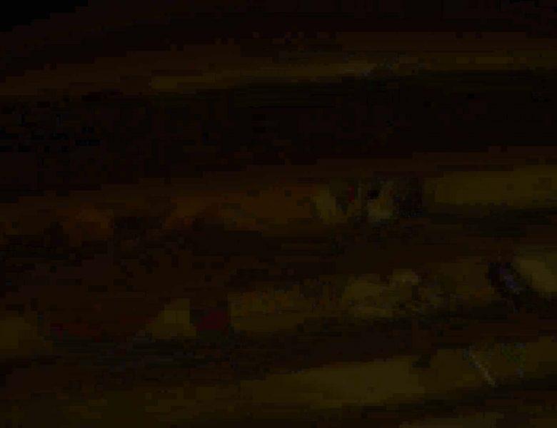 民家風呂専門盗撮師の超危険映像 vol.008 股間  89画像
