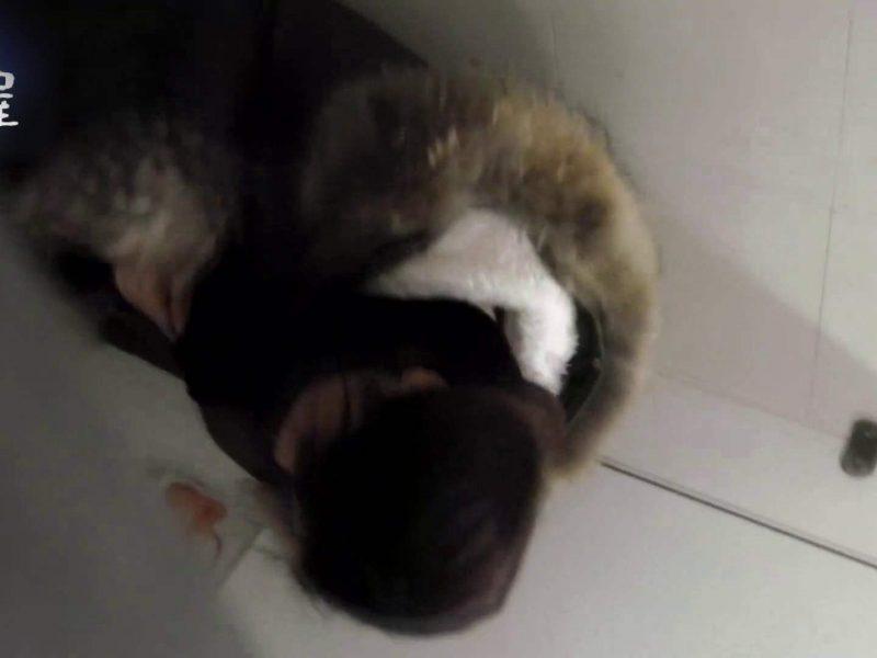 乙女集まる!ショッピングモール潜入撮vol.05 トイレ  60画像
