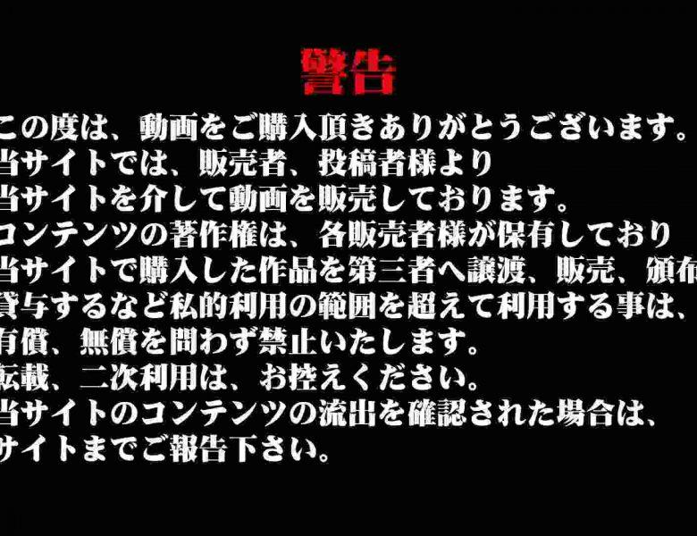 雅さんの独断と偏見で集めた動画集 厠編vol.01 厠  107画像